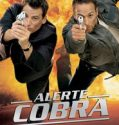 Alerte Cobra Saison 15 Streaming